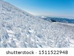 Forests of giant Juhyo (snow covered ice trees or snow monsters) on the frozen snowy mountainside under blue clear sky in Zao hot spring (onsen) & ski resort on a sunny winter day, in Yamagata, Japan