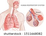 3d vector of the human... | Shutterstock .eps vector #1511668082