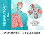 3d vector of the human...   Shutterstock .eps vector #1511668085