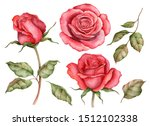 Watercolor Set Of Red Roses An...