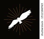 Retro bird of prey silhouette. Flying eagle, falcon, hawk vector badge. Freedom, ornithology symbol