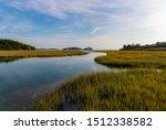 Marshland On The Long Island...