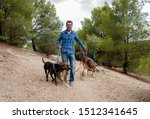 Stock photo professional dog walker or pet sitter walking a pack of cute different breed and rescue dogs on 1512341645