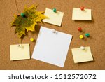 Note Paper Sheets And Autumn...