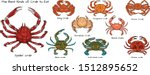 Set Of The Best Kinds Of Crab...