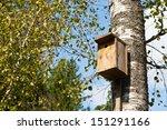 Wooden Birdhouse On Birch Tree...