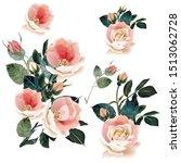set of vector pink roses for... | Shutterstock .eps vector #1513062728