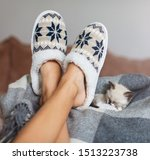 Small photo of Slippers on women's legs and kitten. Cat near soft comfortable home slipper