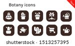 botany icon set. 10 filled... | Shutterstock .eps vector #1513257395