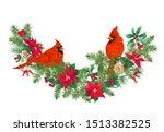 Cardinal Bird   A Symbol Of...
