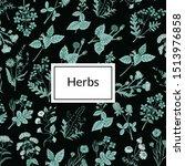 hand drawn medical herbs... | Shutterstock . vector #1513976858
