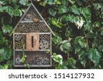 An insect   bug hotel hung on...