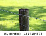 Fence Post With Barbed Wire...