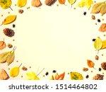 halloween and autumn leaf...   Shutterstock . vector #1514464802