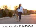 Stock photo young woman walking her adorable akita inu dog outdoors 1514538062