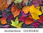 abstract background of autumn... | Shutterstock . vector #151501832