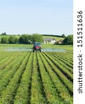 Spraying Willow Crops On The...