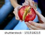 love apple | Shutterstock . vector #151518215