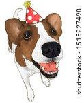 Cute Funny Portrait Dog Face...