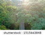 beautiful landscape view of... | Shutterstock . vector #1515663848