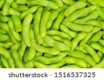 edamame  green soybeans in the... | Shutterstock . vector #1516537325