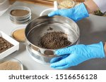 Scientist pulverizing and sieving soil samples at table, closeup. Laboratory analysis