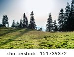 sunrise in the mountains  pine...   Shutterstock . vector #151739372