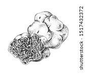 hand drawn white truffle or... | Shutterstock .eps vector #1517432372