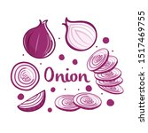 hand drawn onion collection...