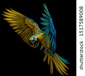 Portrait Of A Macaw Parrot In...