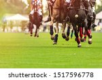 Stock photo polo horses run at the game big plan horses legs wrapped with bandages to protect against hammer 1517596778