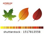 autumn leaves set. autumn leaf... | Shutterstock .eps vector #1517813558