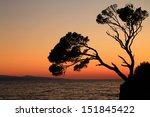 Rock Island At Sunset In Brela...