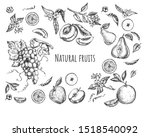 illustration of fruits and... | Shutterstock . vector #1518540092