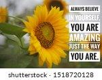 Inspirational  Quote   Always...