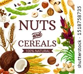 nuts  cereals and grains ... | Shutterstock .eps vector #1518758735