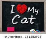 I Love My Cat  Handwritten Wit...