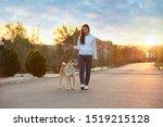 Stock photo young woman walking her adorable akita inu dog outdoors 1519215128
