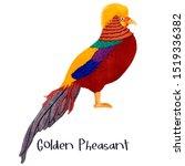 Golden Pheasant Bird Realistic...