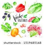 watercolor hand drawn... | Shutterstock . vector #1519685168
