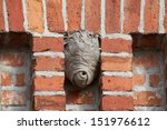 Clinker Wall With Wasp Nest