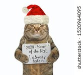 The Cat In The Red Santa Claus...