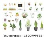 big garden set for floral... | Shutterstock .eps vector #1520999588