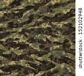Modern Tiger Stripe Camouflage...