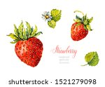 Strawberry. Berries. Watercolor ...