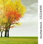 autumn scenery | Shutterstock . vector #15216490