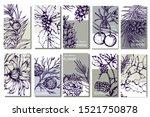 herbal illustration on label...   Shutterstock .eps vector #1521750878