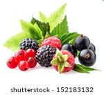 Wild Berries With Leaves