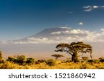 View Of Mt Kilimanjaro In The...