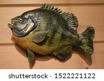 A Blue Gill Fish Mounted On A...